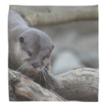 Adorable Otter Bandana