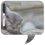 Adorable Otter Dry-Erase Board