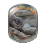 Adorable Otter Glass Candy Jars