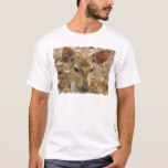 Bambi Deer Men's T-Shirt
