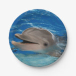 Cute Chattering Dolphin Paper Plate