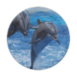 dolphin-104.jpg paper plate