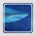 Great White Shark Invitation