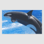 Jumping Orca Whale Rectangular Sticker