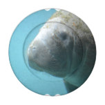 Large Manatee Underwater Button Covers