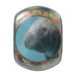 Large Manatee Underwater Jelly Belly Candy Jar
