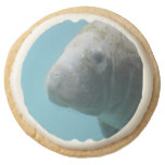 Large Manatee Underwater Round Shortbread Cookie