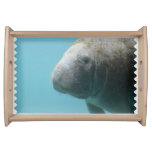 Large Manatee Underwater Serving Tray