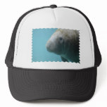 Large Manatee Underwater Trucker Hat