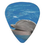 Lovable Dolphin Guitar Pick