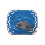 Lovable Dolphin Jelly Belly Tin