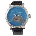 Lovable Dolphin Watch