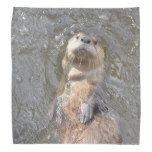 Otter Back Float Bandana