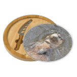 Otter Back Float Cheese Board