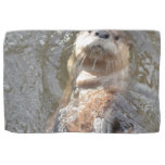 Otter Back Float Kitchen Towel