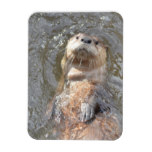 Otter Back Float Magnet