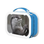 Otter Lunch Box