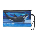 Posing Orca Accessories Bag