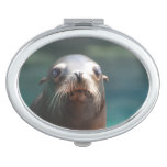 Sea Lion with Whiskers Compact Mirror
