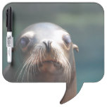 Sea Lion with Whiskers Dry-Erase Board
