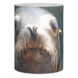 Sea Lion with Whiskers Flameless Candle