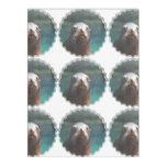 Sea Lion with Whiskers Fleece Blanket