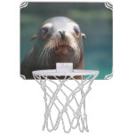 Sea Lion with Whiskers Mini Basketball Hoop