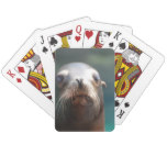 Sea Lion with Whiskers Playing Cards