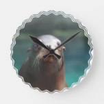 Sea Lion with Whiskers Round Clock