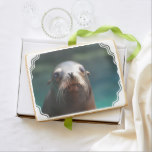 Sea Lion with Whiskers Shortbread Cookie