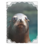 Sea Lion with Whiskers Spiral Notebook