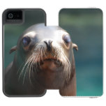 Sea Lion with Whiskers Wallet Case For iPhone SE/5/5s