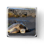 Sea Turtle Square Pin