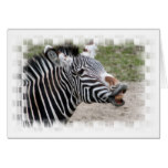 Smiling Zebra Greeting Card