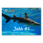 Swimming Shark Table Number