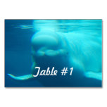 Underwater Beluga Whale Table Number