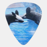 Whale Photo Guitar Pick