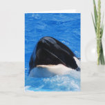 Whale Sounds Greeting Card