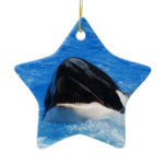 Whale Sounds Ornaments